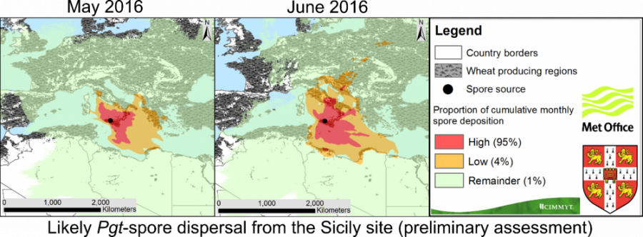 Picture Showing Pgt-spore Dispersal from Sicily site