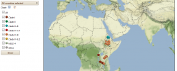 Stem Rust Clades map